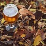 Kelowna Pub Fall Things To Do In Okanagan Valley